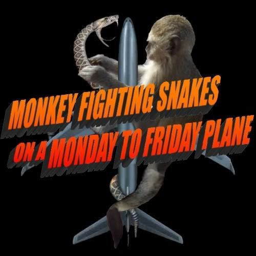 monkeyfightingsnakes749.jpg